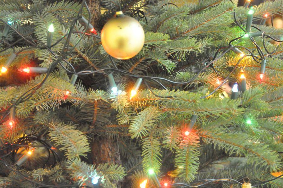 EEEEBłogosławionego czasu Bożego Narodzenia!